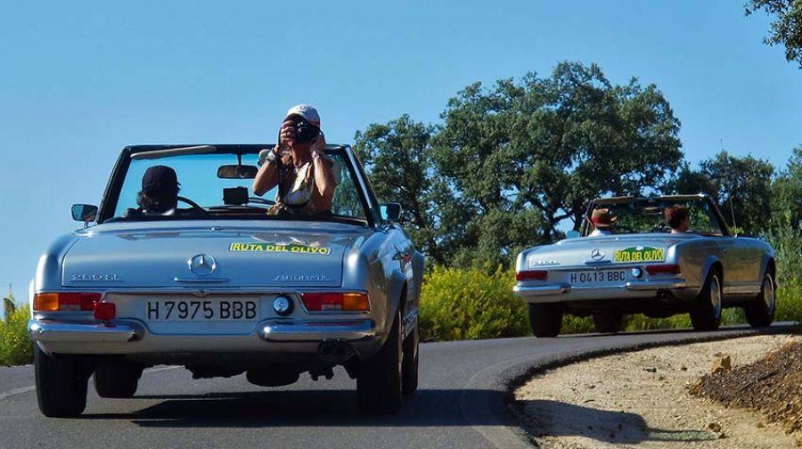 Nuevo éxito de la Ruta del olivo del Mercedes Benz Club España